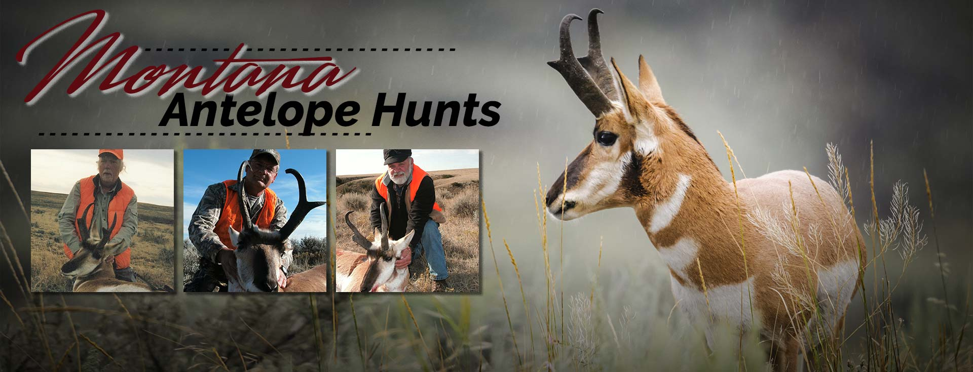 Montana Antelope |  Rifle Antelope Hunts