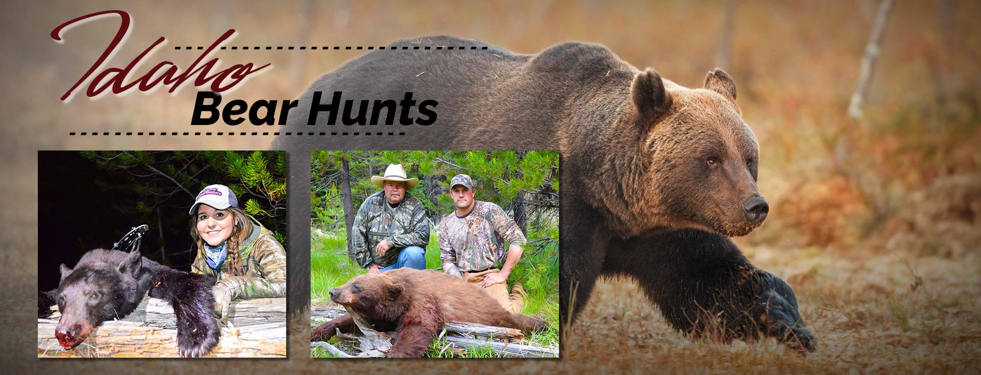 Idaho Black Bear Hunts Bear Hunting Guide Idaho