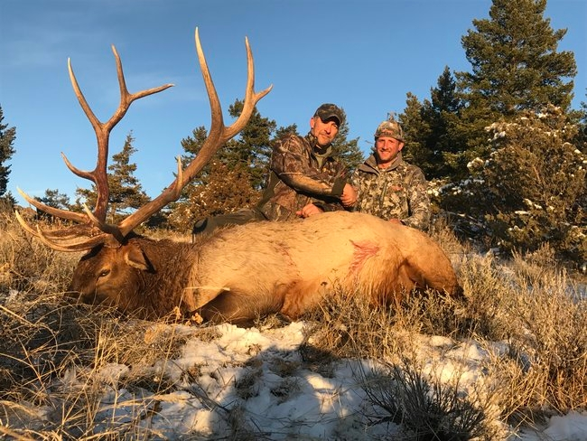 Trophy Elk Hunt in Montana